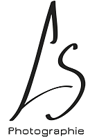 logo-ls2-2.png
